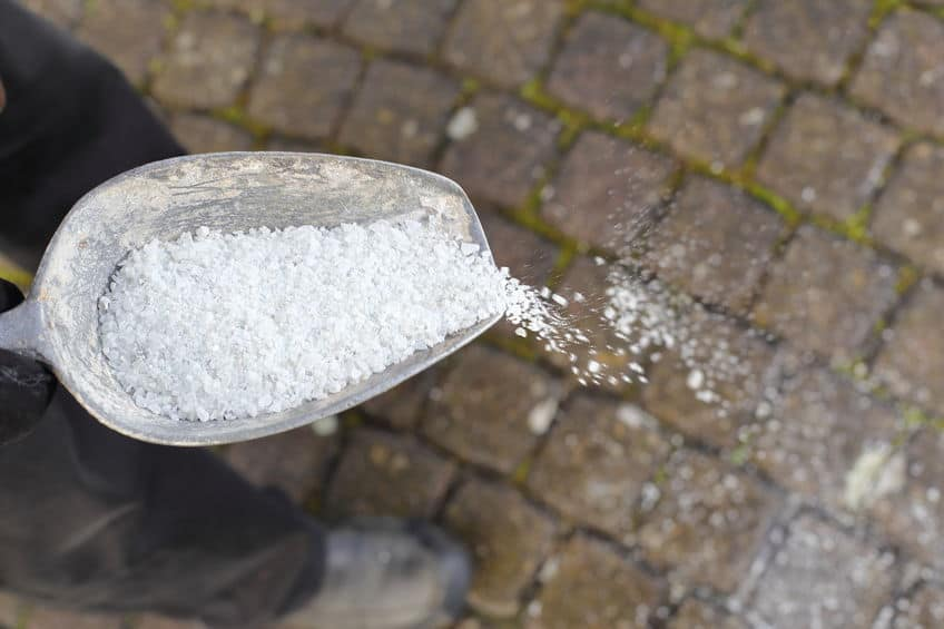 person spreading salt on a pathway
