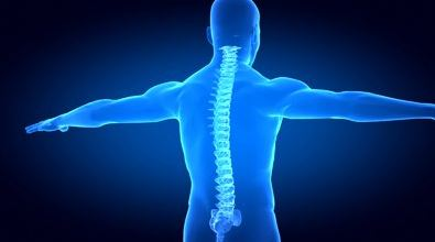 image of a person focusing on their spine