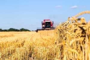Photo of combine harvester that is harvesting wheat