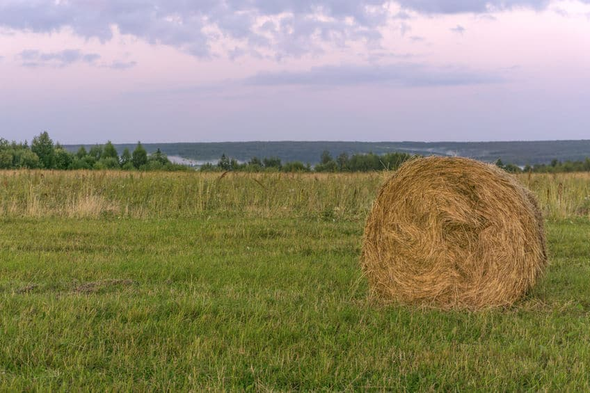 large round bale of hay lays on a beveled meadow