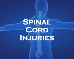 Spinal Cord Injuries - blue over an image of a person's spine